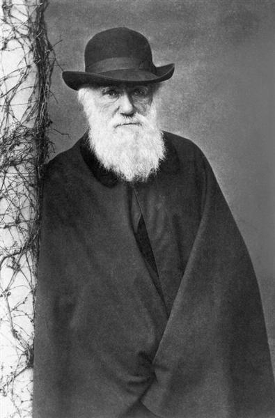 Charles Darwin ca. 1880