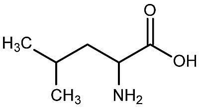 This is the chemical structure of leucine.