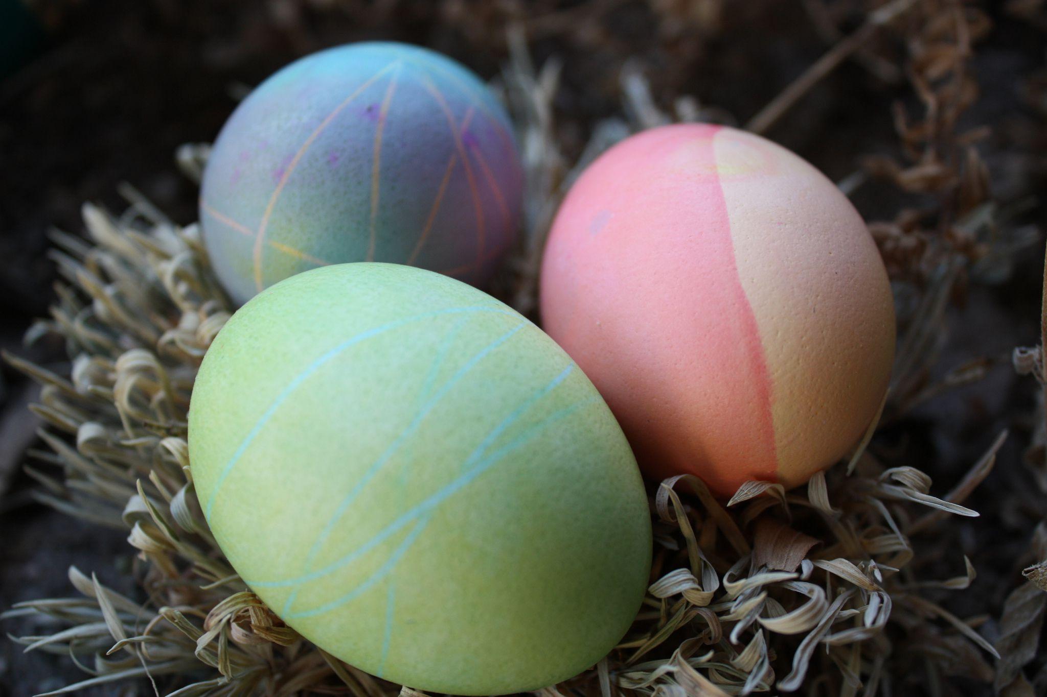 Bu All Dogal Easter Egg Boyalar Yapmak Kolaydir