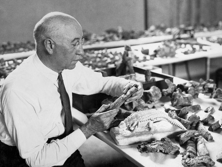 Paleontologist Barnum Brown