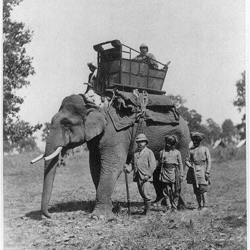 British In Colonial India Photo Essay The Prince Of Wales Hunts From Elephantback