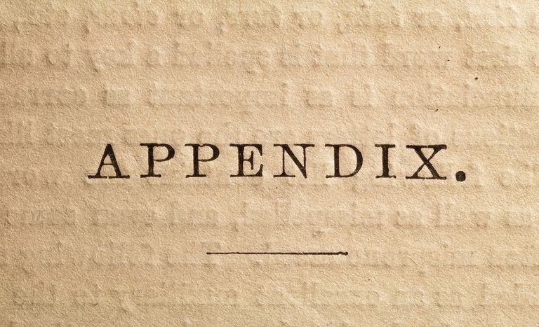 The Appendix page of an antique book.