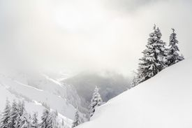 Snowy, misty mountains appear thickly blanketed in white