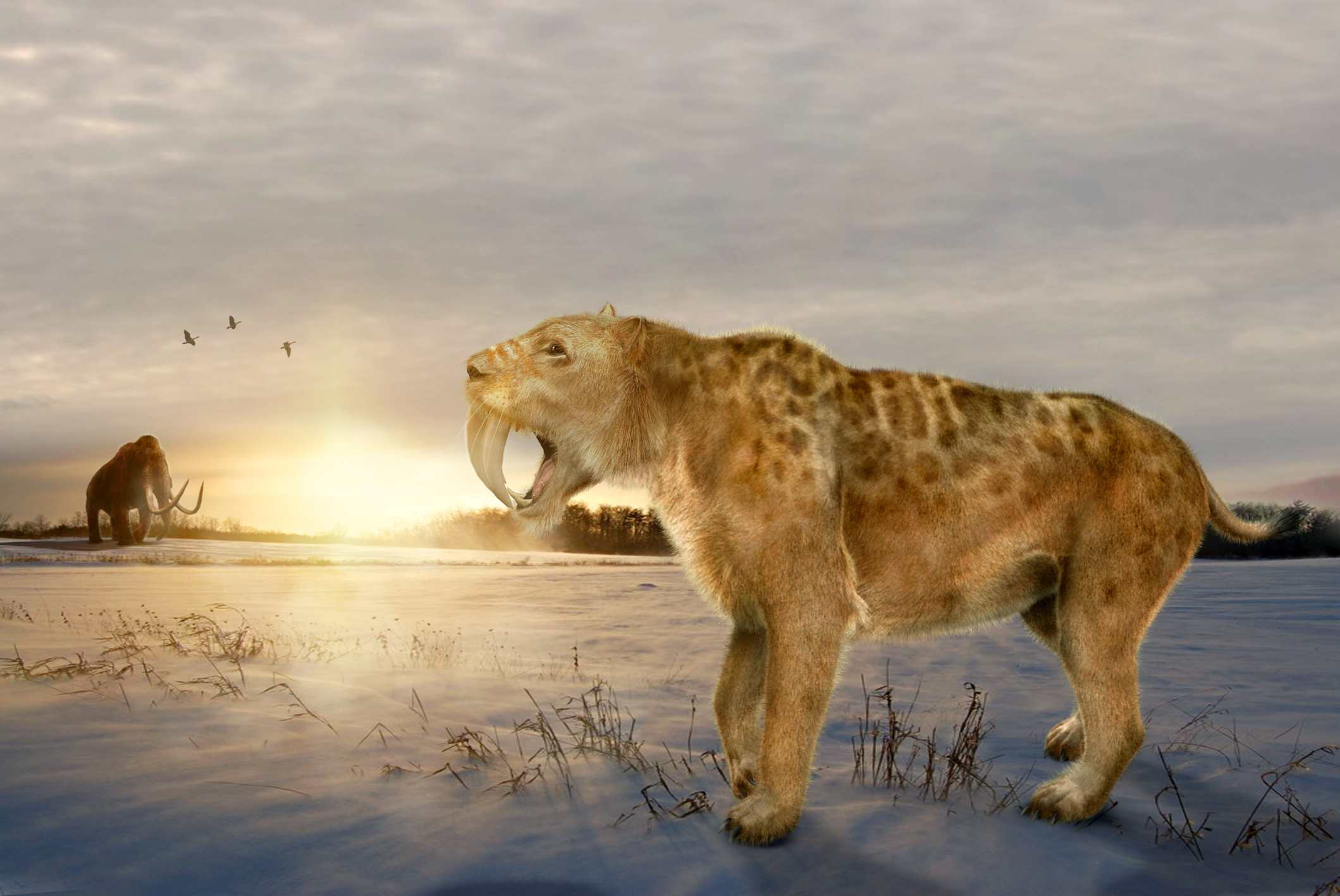 An artist rendering of prehistoric times
