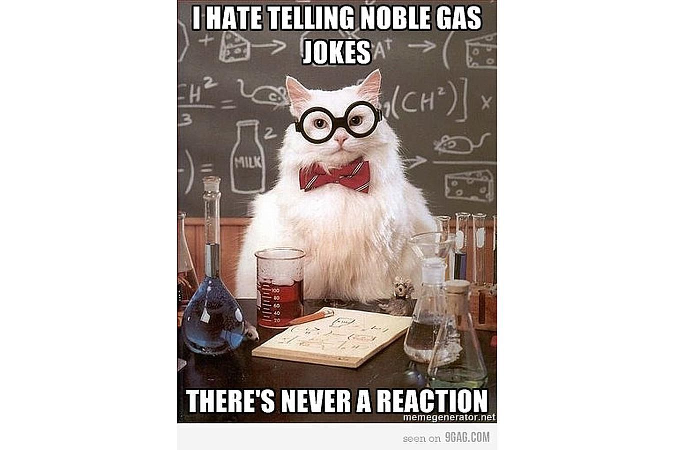 Chemistry Cat gets no reaction from noble gas jokes.