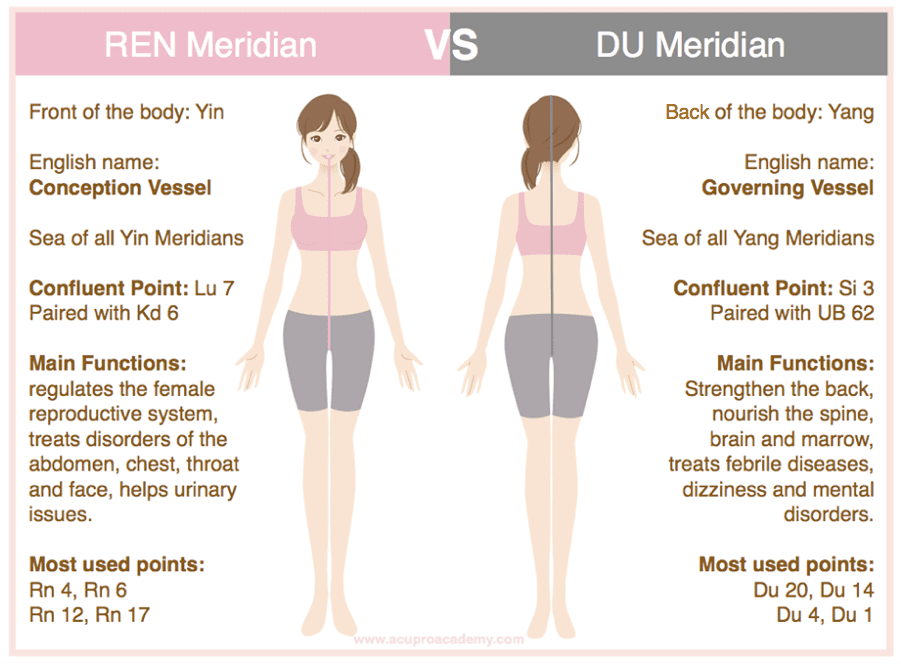 The Bodys Meridian System And The Governing Vessel
