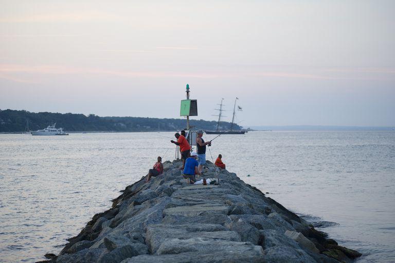 people pier fishing