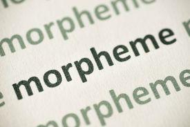 word morpheme printed on paper macro