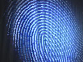 Blue Fingerprint Image