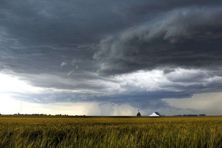A storm over a golden wheat field threatens a farm and barn south of Tonkawa, Oklahoma