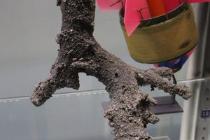 Fulgurites are hollow tubes formed when lightning strikes sand.
