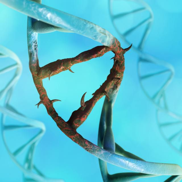 DNA mutations cause microevolution to happen