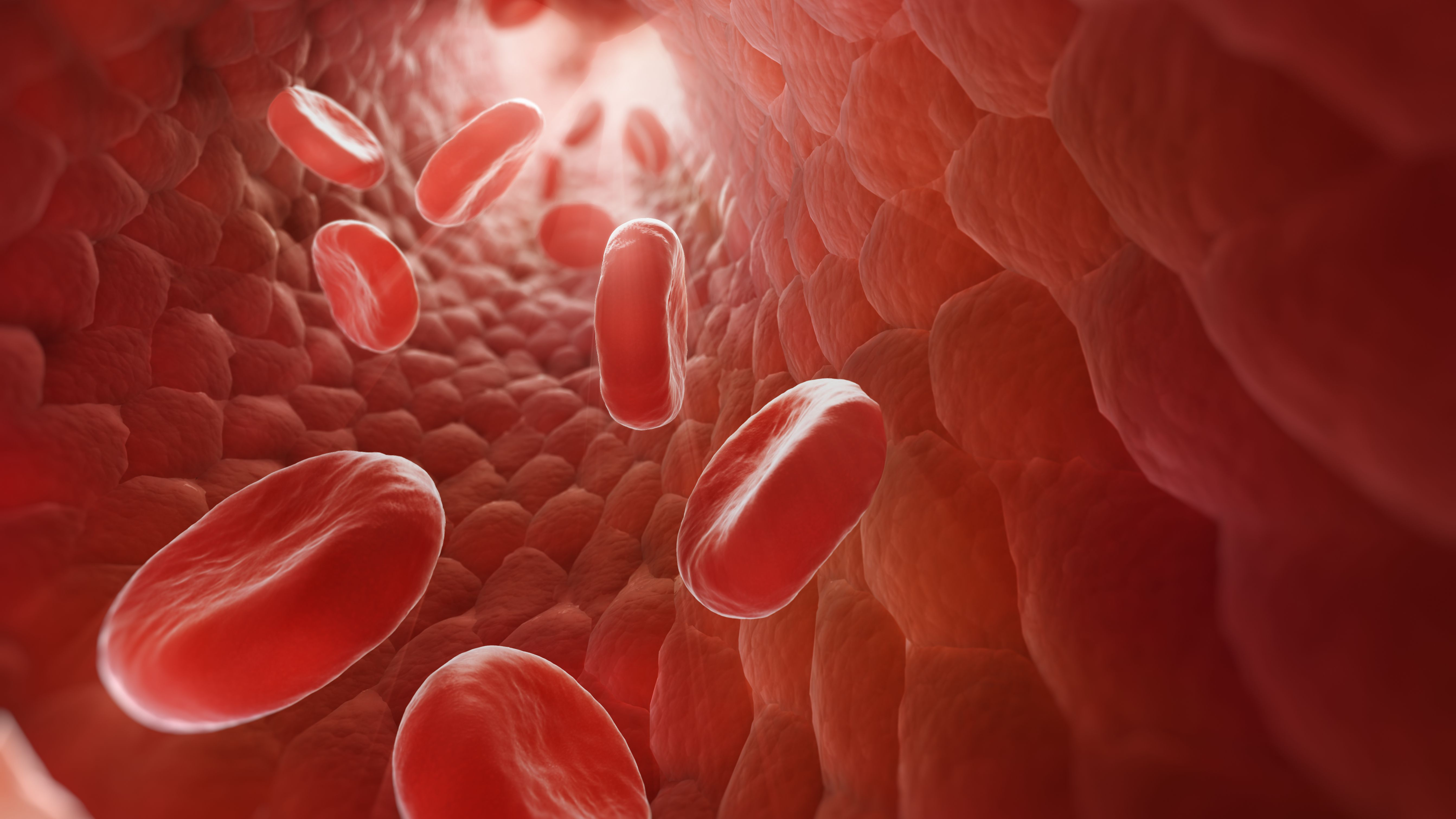 12 Interesting Facts About Blood