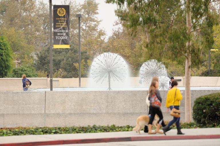 Cal State University, Long Beach