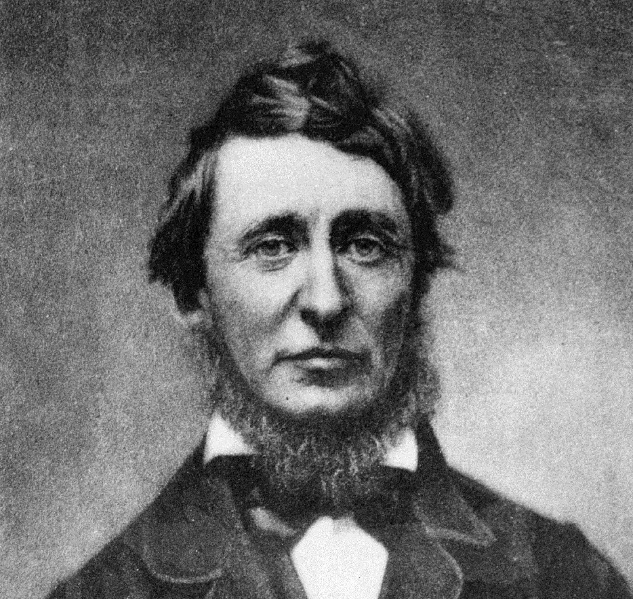 Portrait of author Henry David Thoreau