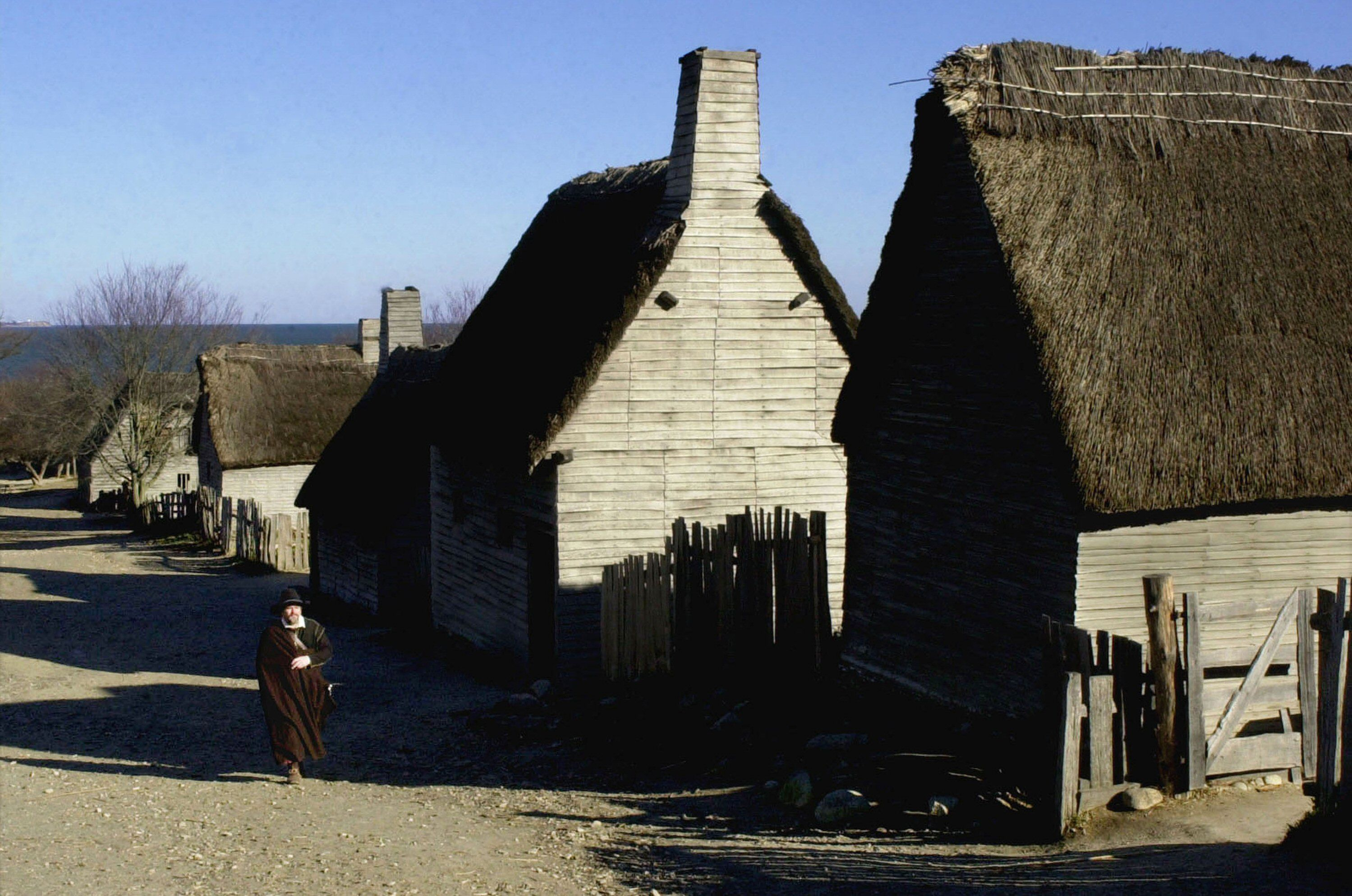 wooden homes with thatched roofs