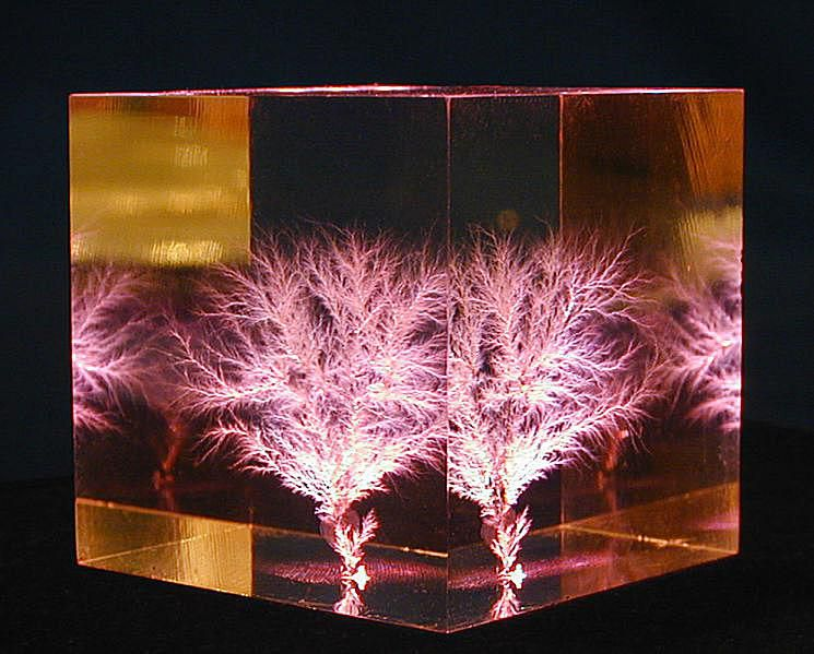 """This Lichtenberg figure was formed inside a"""" cube of polymethyl methacrylate."""