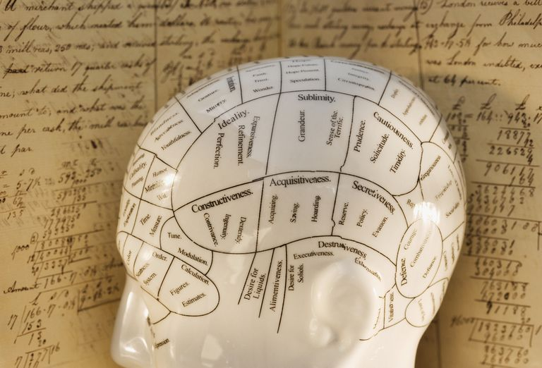 What Is Phrenology?