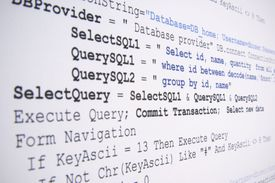 Snippet of SQL programming language