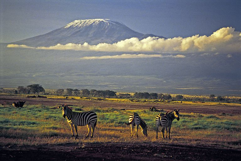 Kilimanjaro is relatively easy to climb for experienced mountaineers.