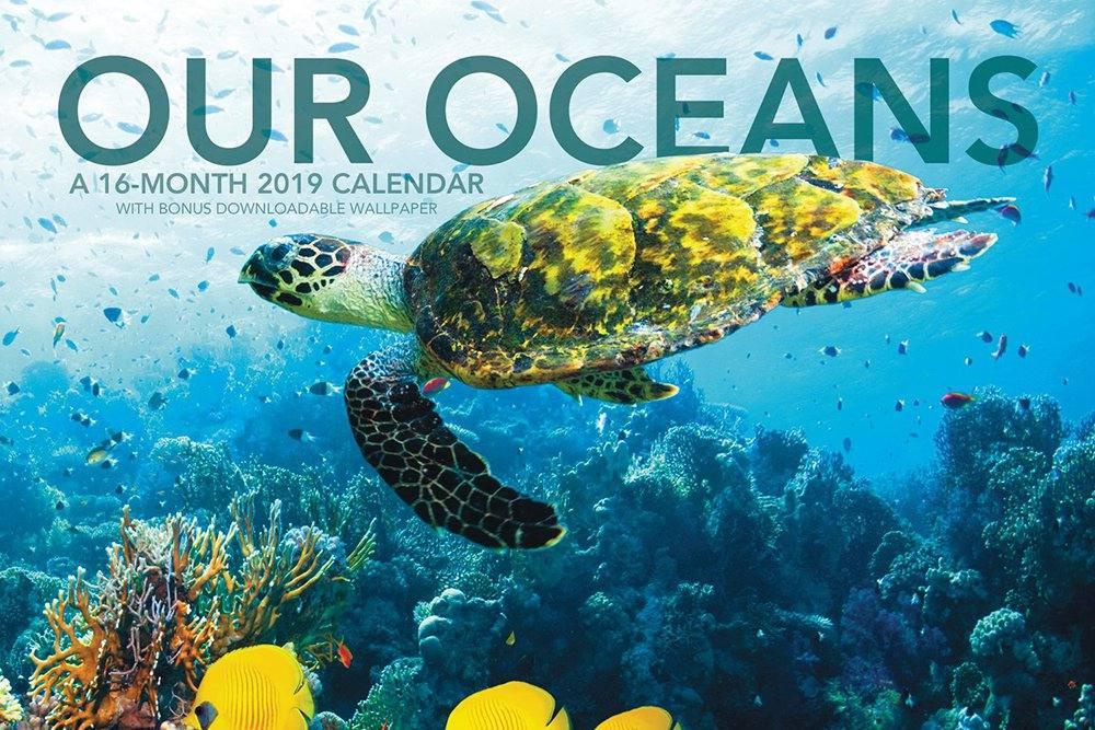Marine life calendar 2019