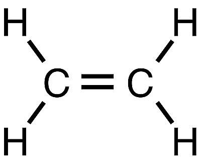 Chemical Structures Starting With The Letter E