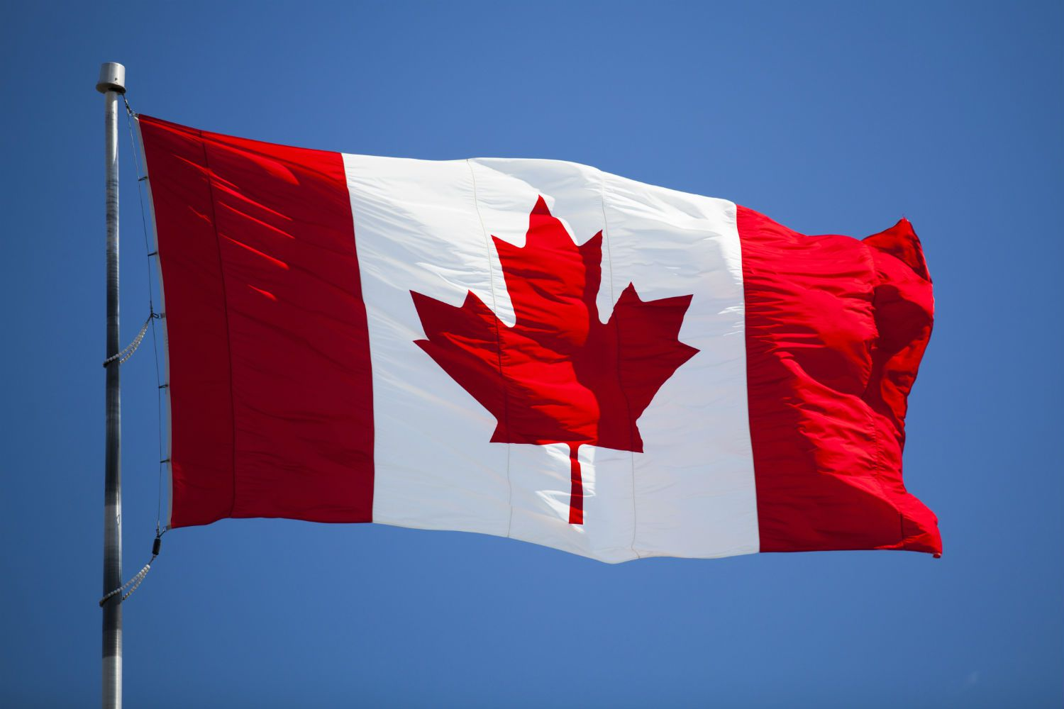 The national flag of canada - Canada flag image ...