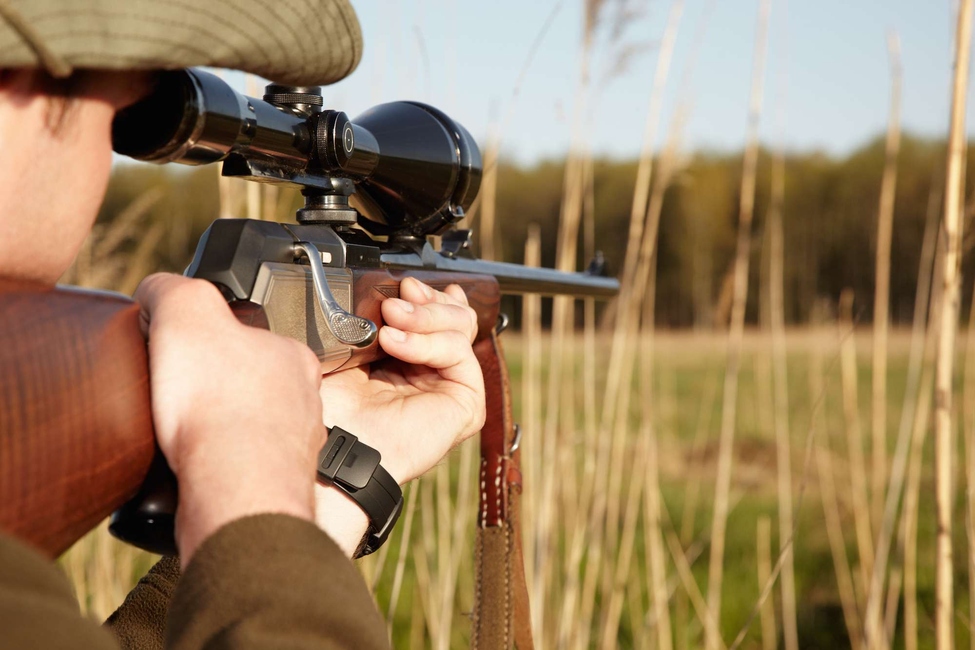 Hunting Lease Or Hunting Rights Contract