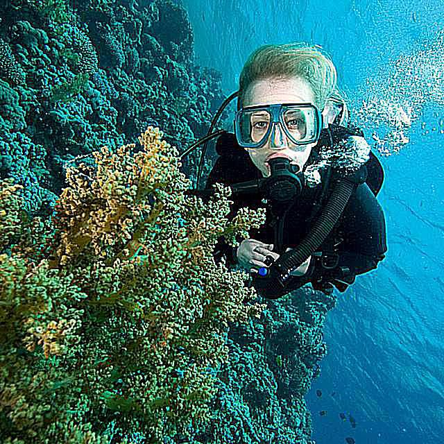 Diver With Soft Coral.jpg