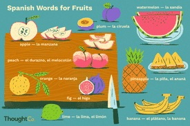 Illustration of different fruits with their names in Spanish and English