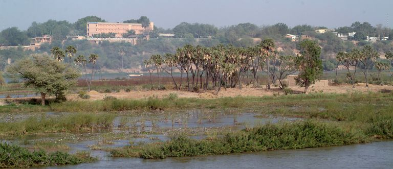 Africa, North Africa, Niger, Niamey, View Of Niger River