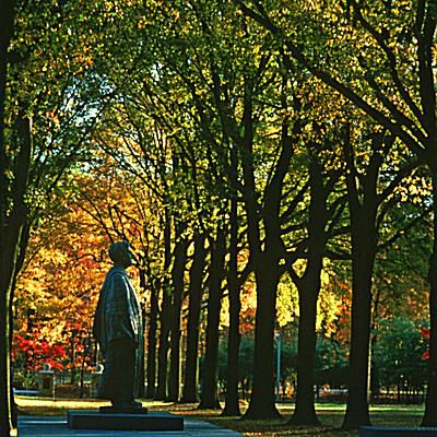 Rhodes College Avenue of Oaks