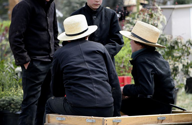 The Amish are examples of types of Genetic Drift
