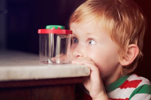 child staring intently at a plastic jar