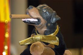 Triumph, the Insult Comic Dog puppet