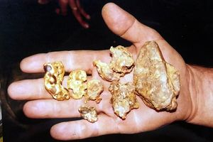 Hand holding gold nuggets