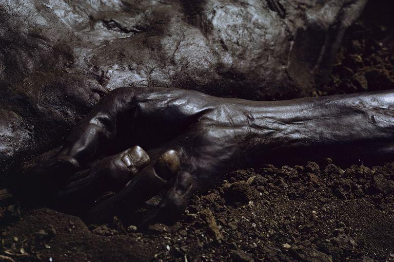 Hand of Grauballe Man, Iron Age bog mummy, Aarhus, Denmark, Scandinavia, Europe