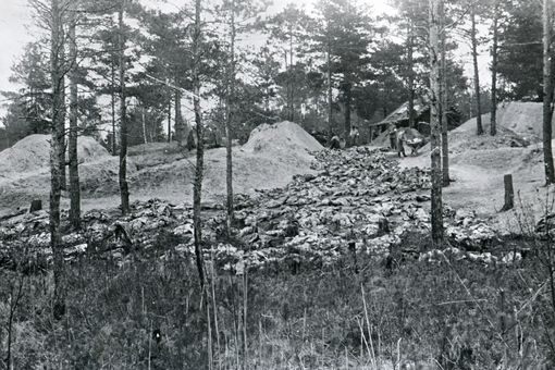Picture of the exhumed bodies at Katyn in Russia.