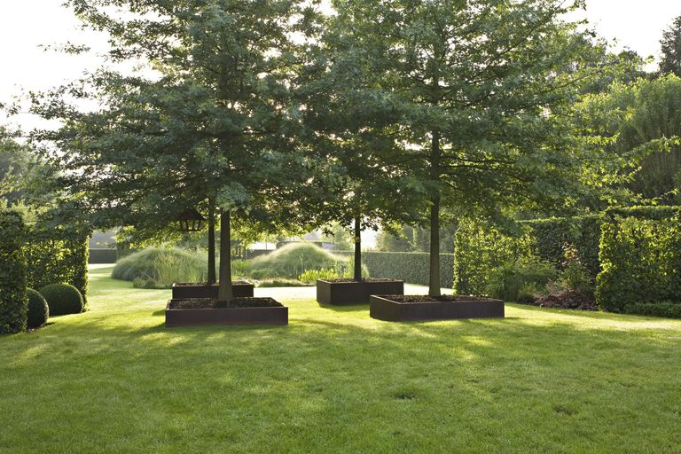 Lawn and garden with planters and pin oaks