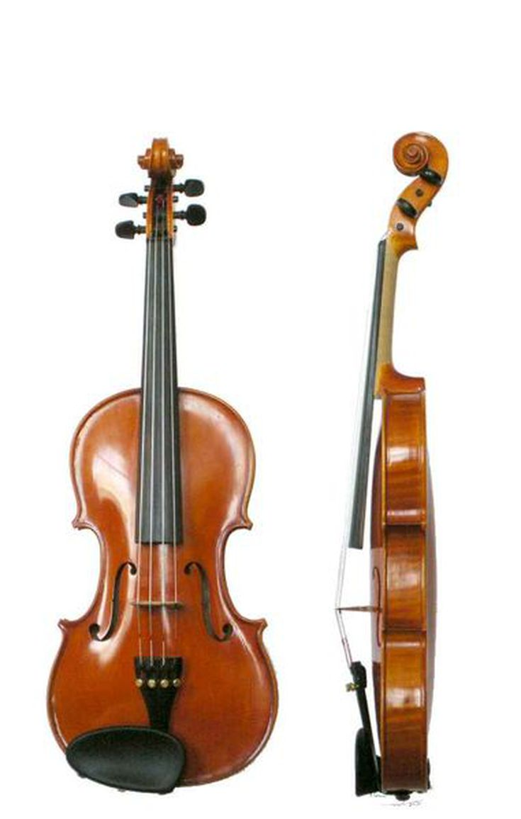 String Musical Instruments Images Of String Musical Instruments