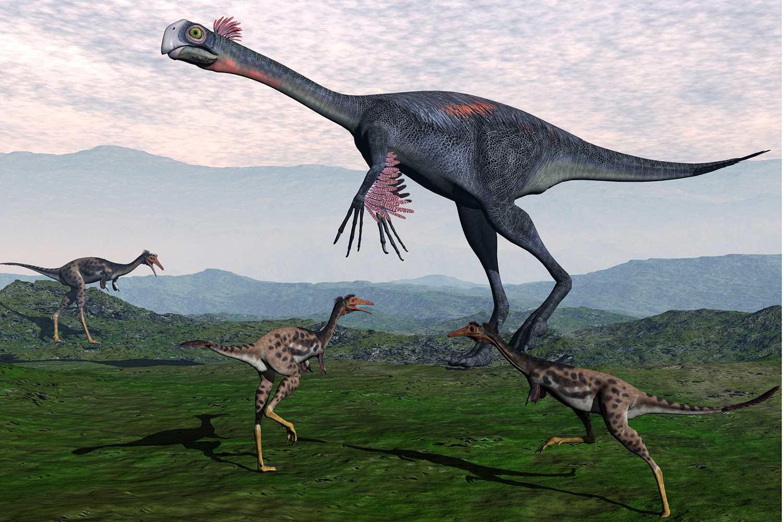 World S Largest Dinosaur