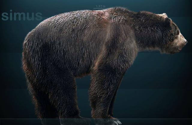 giant short-faced bear