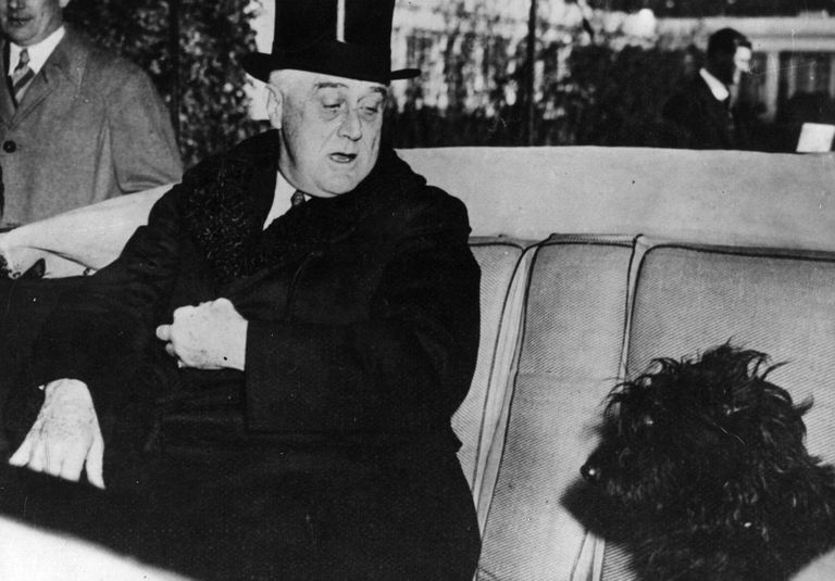 President FDR and Dog Fala