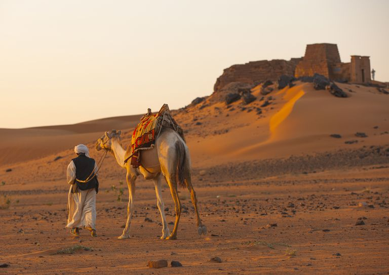 man walks with camel in desert