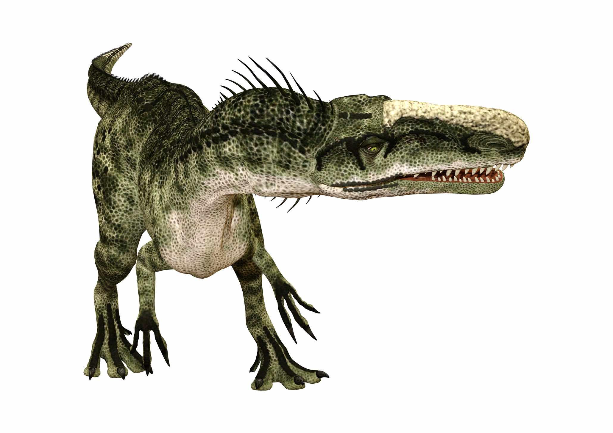 graphic rendering of monolophosaurus