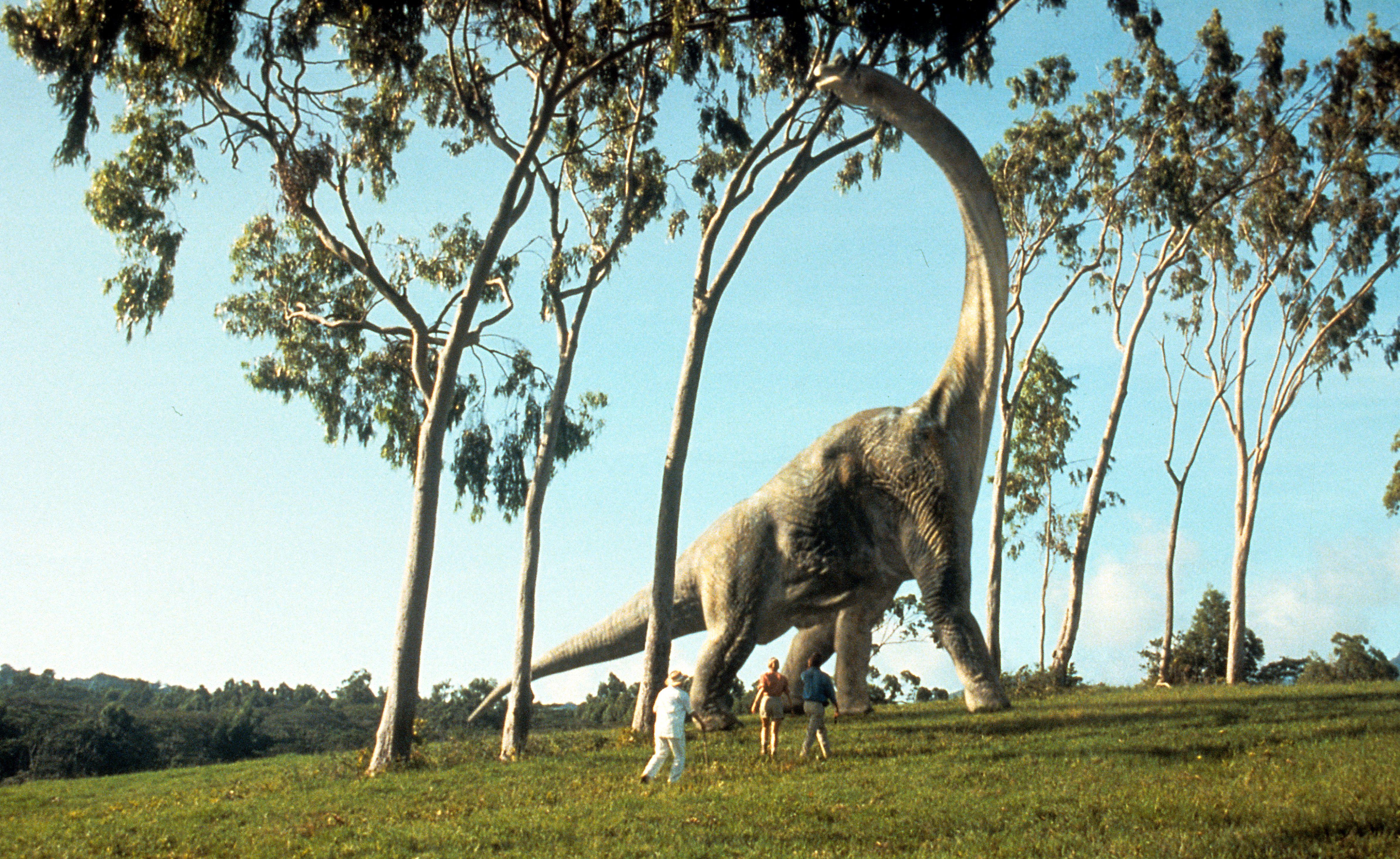 Apatosaurus shot in a movie