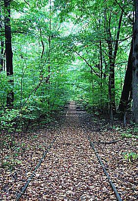 Calvin College Nature Preserve