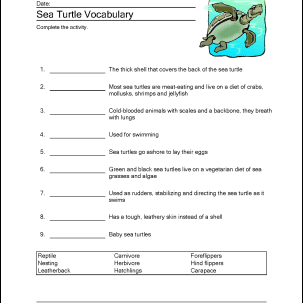 sea turtle word search crossword puzzle and more