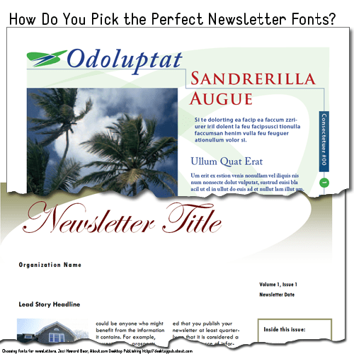Sample newsletter templates with fonts