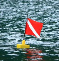 red and white dive flag